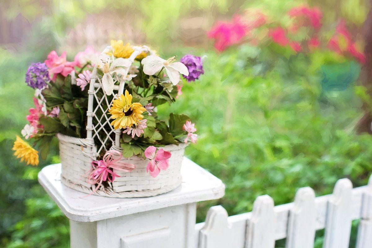 年金受給者の自宅(庭)