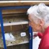 認知症予防にウサギを飼う高齢者